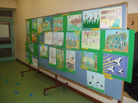 """Public presentation of the """"Think Green Every Day!"""" project results"""
