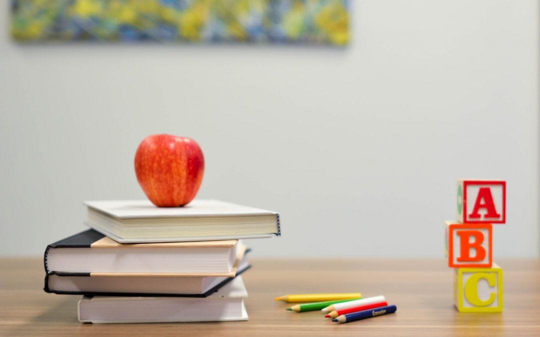 "Educational training ""Relationship Circle Victim – Helper"""