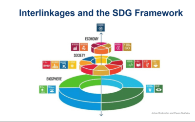 Pandemic impact on global sustainable development goals